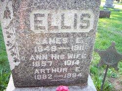 Ann <I>Bicknell</I> Ellis