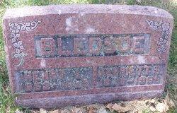 Harriett S <I>Powers</I> Bledsoe