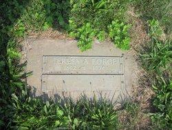 Teresa Force