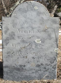 Molly Sargeant