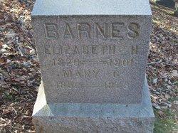 Mary G. Barnes