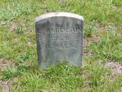 L Anderson