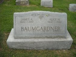 James A. Baumgardner
