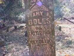 Mary Arminta <I>Peden</I> Boles
