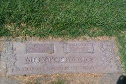 Harry Montgomery