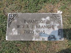 """Infant"" Branch"