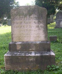 Andrew J Carpenter