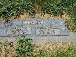 Dennis Elias Adams