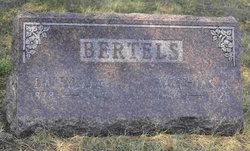 Mathias B. Bertels