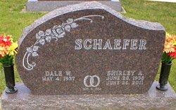 Dale W Schaefer