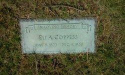 Eli Alfred Coppess