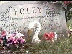 Walter C Foley