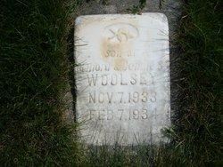 George Udell Woolsey