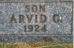 Arvid G.  (baby) Johnson