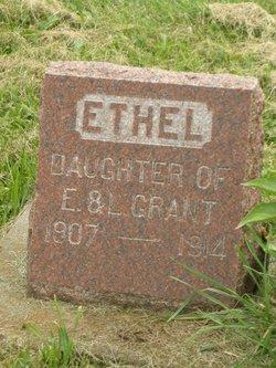 Ethel Lilly Grant