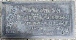David William Anderegg