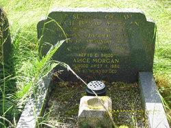 Alice <I>Evans</I> Morgans