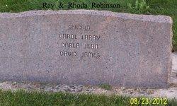 Ray Clayton Robinson