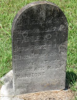 Theodore Marshall Farley