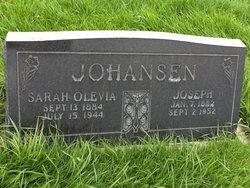 Joseph Johansen, Jr