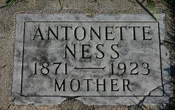 Antoinette <I>Holm</I> Ness