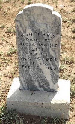 Wintford Gill