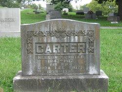Nelson Pierce Carter