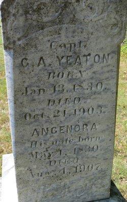Angenora <I>Coss</I> Yeaton