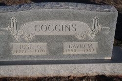 David M. Coggins