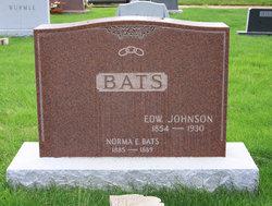 Hannah L <I>Johnson</I> Bats