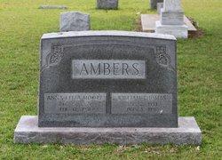 Anna Eliza <I>Moore</I> Ambers