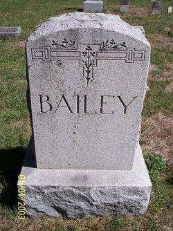 Emily Ann <I>Hawkins</I> Bailey