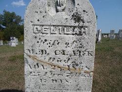 Delilah H. Clark