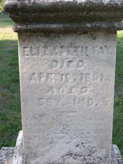 Elizabeth Fay