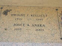 Joyce A. Anaka