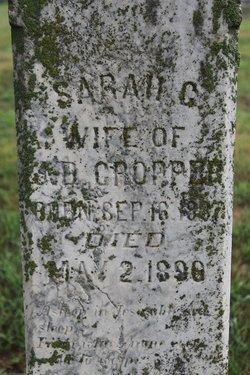 Sarah C <I>Walden</I> Cropper
