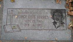 Jorge Luis Torres