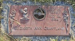 Elizabeth Ann Grantland