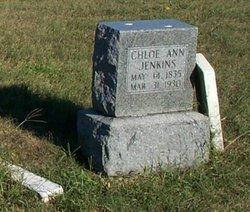 Chloe Ann <I>Redmon</I> Jenkins