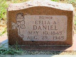 Celia Anne <I>Newland</I> Daniel