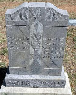 Ceslestia Haseltine <I>Davis</I> Cline