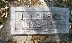 Isaac Walter Gibbins