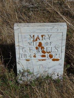 Anna Mary <I>Depenbrink</I> Krels