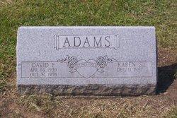 David Franklin Adams