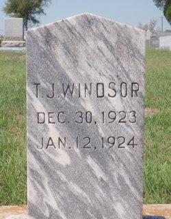 T. J. Windsor