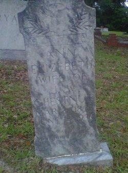 Nancy Ann Elizabeth <I>Stanley</I> Chestnut