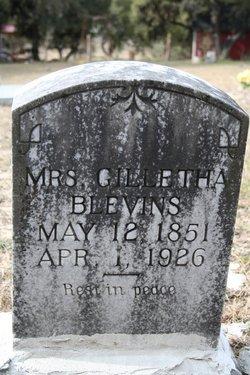 Gilletha <I>Stidham</I> Blevins