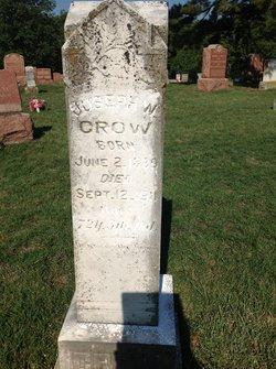 Joseph Washington Crow