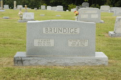Nettie <I>Jones</I> Brundige