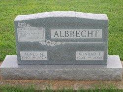 Agnes M Albrecht